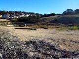 402 Majestic Bluff - Photo 2