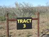 TRACT 3 Fm 2200 - Photo 6
