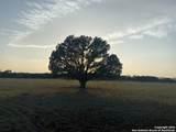 6339 State Highway 16 S - Photo 1