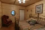 529 Appaloosa Hollow - Photo 14