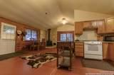 529 Appaloosa Hollow - Photo 6