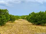 TRACTS 17 & 21 Antelope Draw Ranch - Photo 13