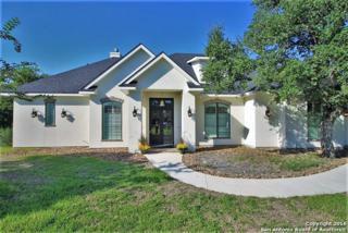 1019 Pegasus Dr, Spring Branch, TX 78070 (MLS #1205624) :: Exquisite Properties, LLC