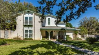 309 Sagecrest Dr, Hollywood Pa, TX 78232 (MLS #1212294) :: Exquisite Properties, LLC