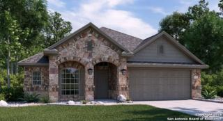 8722 Study Butte, San Antonio, TX 78254 (MLS #1215941) :: Ultimate Real Estate Services