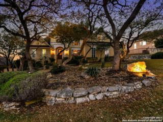 25223 Doral Crest, San Antonio, TX 78260 (MLS #1226454) :: Exquisite Properties, LLC