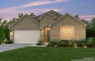 13943 Persimmon Cove, San Antonio, TX 78245 (MLS #1226459) :: Exquisite Properties, LLC