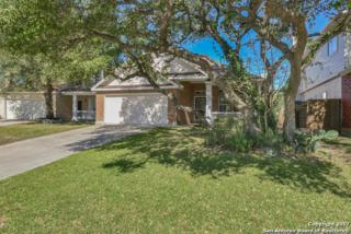 23622 Persian Hollow, San Antonio, TX 78260 (MLS #1226461) :: Exquisite Properties, LLC