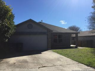 10443 Pine Glade, San Antonio, TX 78245 (MLS #1226462) :: Exquisite Properties, LLC