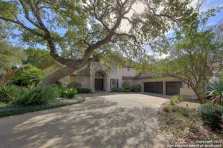 6 Tournament Green, San Antonio, TX 78257 (MLS #1226464) :: Exquisite Properties, LLC