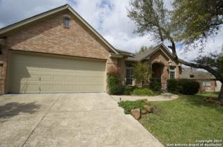 118 Antler Cir, San Antonio, TX 78232 (MLS #1228597) :: Exquisite Properties, LLC