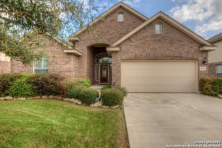 26634 Camden Chase, Boerne, TX 78015 (MLS #1229176) :: Exquisite Properties, LLC