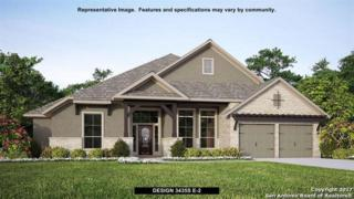 30107 Valley Trace, Fair Oaks Ranch, TX 78015 (MLS #1229227) :: Exquisite Properties, LLC