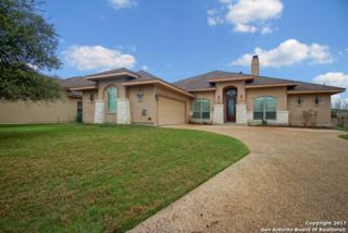 30107 Cibolo Run, Fair Oaks Ranch, TX 78015 (MLS #1229339) :: Exquisite Properties, LLC