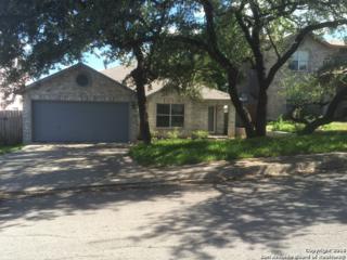 7011 Autumn Park Dr, San Antonio, TX 78249 (MLS #1230024) :: Exquisite Properties, LLC