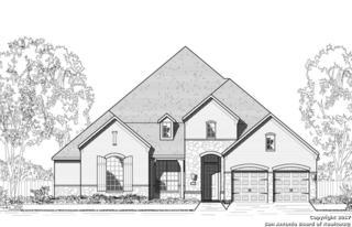 28707 Hidden Gate, Fair Oaks Ranch, TX 78015 (MLS #1230289) :: Exquisite Properties, LLC