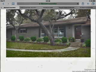 206 Yosemite Dr, San Antonio, TX 78232 (MLS #1230387) :: Exquisite Properties, LLC
