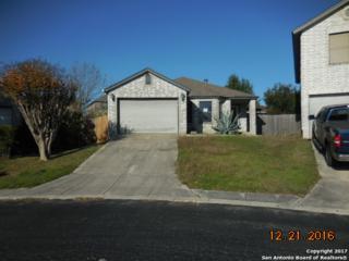 6607 Honeyridge Lane, San Antonio, TX 78239 (MLS #1230784) :: Exquisite Properties, LLC