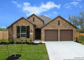 102 Cimarron, Boerne, TX 78006 (MLS #1231328) :: Exquisite Properties, LLC