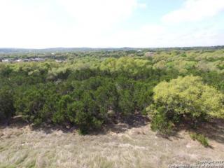 LOT 9 Swede Creek, Boerne, TX 78006 (MLS #1231488) :: Exquisite Properties, LLC