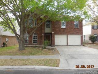 6518 Fontana Point, San Antonio, TX 78240 (MLS #1231555) :: Exquisite Properties, LLC