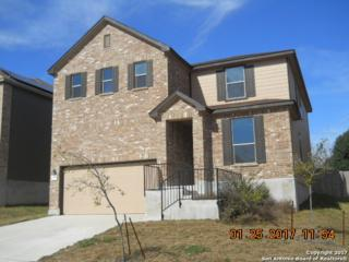 6731 Loma Blanca, San Antonio, TX 78233 (MLS #1231676) :: Exquisite Properties, LLC