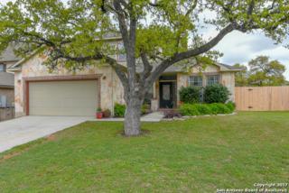 7603 Mission Pt, Boerne, TX 78015 (MLS #1231752) :: Exquisite Properties, LLC