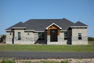 133 Westfield Landing, La Vernia, TX 78121 (MLS #1231907) :: Exquisite Properties, LLC