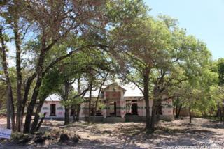 141 Bobby Lynn Dr, Adkins, TX 78101 (MLS #1231909) :: Exquisite Properties, LLC
