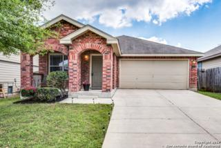 11414 Slickrock Draw, San Antonio, TX 78245 (MLS #1231912) :: Exquisite Properties, LLC