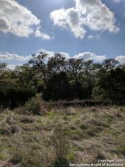 1320 Pinot Grigio, New Braunfels, TX 78132 (MLS #1232046) :: Magnolia Realty