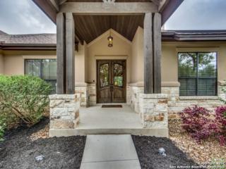 161 Shady Hollow, New Braunfels, TX 78132 (MLS #1232047) :: Magnolia Realty