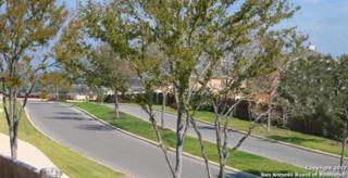 12003 White River Dr, San Antonio, TX 78254 (MLS #1232050) :: Magnolia Realty