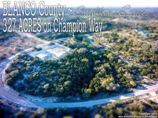 LOT 79 Champion Way, Blanco, TX 78070 (MLS #1232062) :: Magnolia Realty