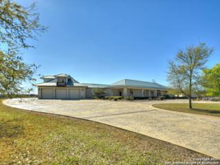 338 Ammann Road, Boerne, TX 78015 (MLS #1232064) :: Magnolia Realty