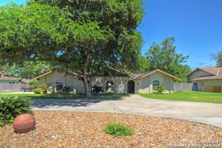 121 Garrapata, San Antonio, TX 78232 (MLS #1235411) :: Ultimate Real Estate Services