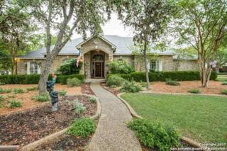 29606 No Le Hace Dr, Fair Oaks Ranch, TX 78015 (MLS #1236043) :: Exquisite Properties, LLC