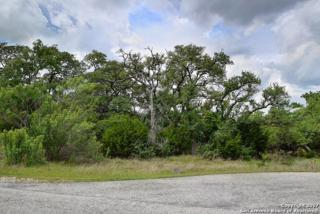 1009 Corto Circle, New Braunfels, TX 78132 (MLS #1236605) :: Ultimate Real Estate Services