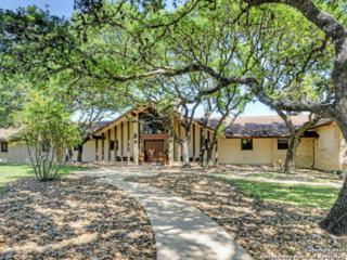 28486 Preakness Ln, Fair Oaks Ranch, TX 78015 (MLS #1237261) :: Exquisite Properties, LLC