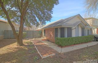 3737 Candlewind Ln, San Antonio, TX 78244 (MLS #1237543) :: Ultimate Real Estate Services