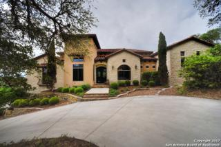 133 Hidden Hills, New Braunfels, TX 78132 (MLS #1237549) :: Ultimate Real Estate Services