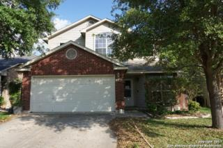 11918 Kudu St, San Antonio, TX 78253 (MLS #1237583) :: Exquisite Properties, LLC