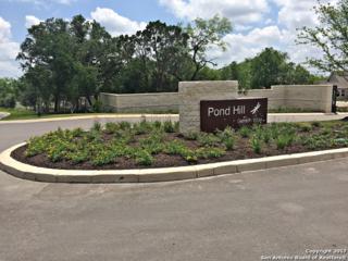 168 Bedingfeld, Shavano Park, TX 78231 (MLS #1237825) :: Exquisite Properties, LLC