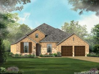 3746 Chicory Bend, Bulverde, TX 78163 (MLS #1237949) :: Ultimate Real Estate Services