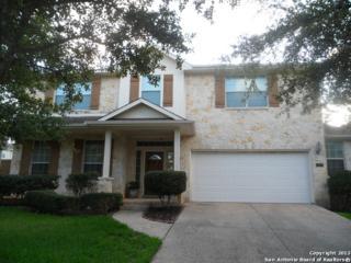 427 Elkgrove Ct, San Antonio, TX 78260 (MLS #1238458) :: Exquisite Properties, LLC
