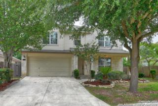 4335 Granite Shls, San Antonio, TX 78244 (MLS #1238460) :: Exquisite Properties, LLC