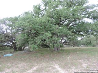 1791 County Road 320, Floresville, TX 78114 (MLS #1238463) :: Exquisite Properties, LLC