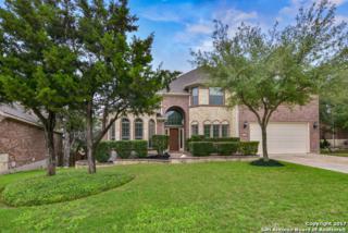 15922 Watchers, San Antonio, TX 78255 (MLS #1238466) :: Exquisite Properties, LLC