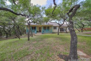 30403 Buck Ln, Bulverde, TX 78163 (MLS #1238547) :: Ultimate Real Estate Services