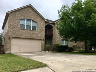 1310 Coronado Blvd, Universal City, TX 78148 (MLS #1238665) :: Ultimate Real Estate Services